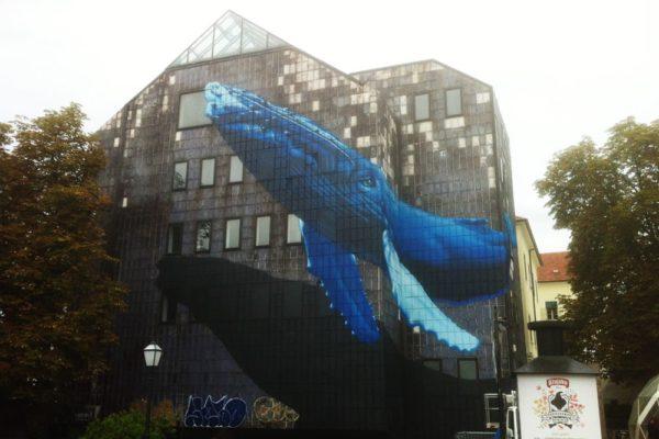 baleine-06